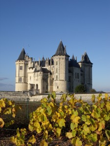 French castle in the vineyards
