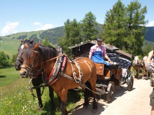 Horse-drawn carriage ride in the Alps